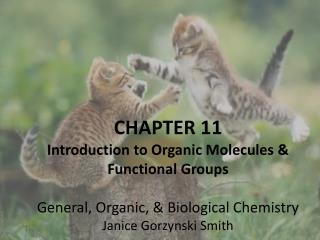 CHAPTER 11 Introduction to Organic Molecules & Functional Groups