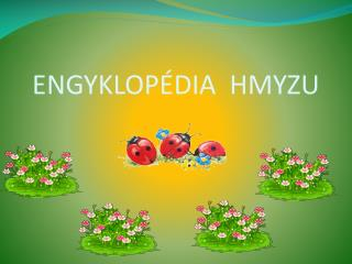 ENGYKLOP�DIA  HMYZU