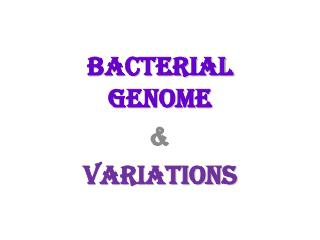 Bacterial Genome & Variations