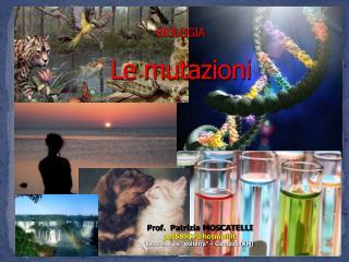 BIOLOGIA Le mutazioni