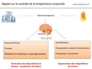 Rappel sur le contrôle de la température corporelle