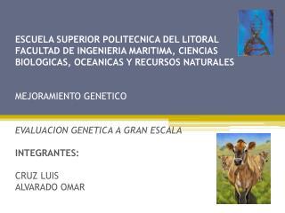HISTORIA DE LAS COMPARACIONES GENETICAS