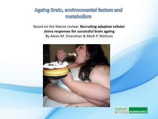 Ageing Brain, environmental factors and metabolism