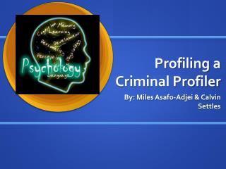 Profiling a  Criminal Profiler