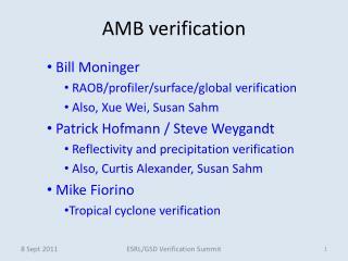 AMB verification