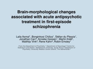Morphological brain changes in schizophrenia