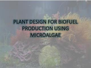 PLANT DESIGN FOR BIOFUEL PRODUCTION USING MICROALGAE