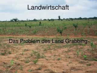 Landwirtschaft Das Problem des Land Grabbing
