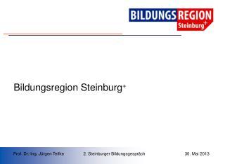 Bildungsregion Steinburg +
