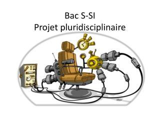 Bac S-SI Projet pluridisciplinaire