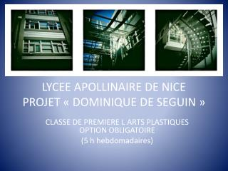 LYCEE APOLLINAIRE DE NICE PROJET «DOMINIQUE DE SEGUIN»