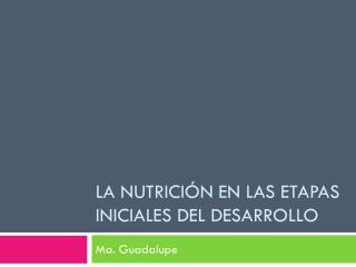 La nutrición en las etapas iniciales del desarrollo