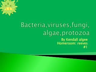 Bacteria,viruses,fungi, algae,protozoa