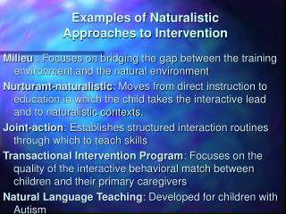 Examples of Naturalistic  Approaches to Intervention