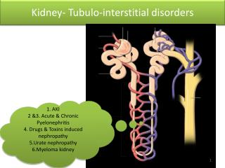Kidney-  Tubulo -interstitial disorders