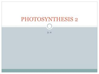 PHOTOSYNTHESIS 2