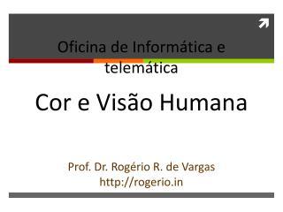 Oficina de Informática e  telemática Cor  e Visão Humana