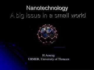 Nanotechnology  A big issue in a small world