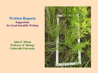 Written Reports Suggestions  for Good Scientific Writing