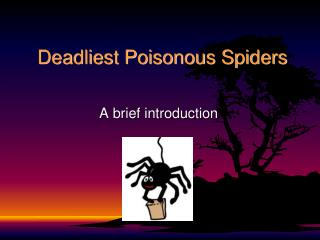 Deadliest Poisonous Spiders