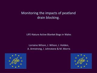 Monitoring the impacts of  peatland drain blocking.