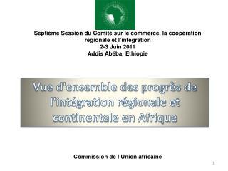 Vue d'ensemble des progr�s de l'int�gration r�gionale et continentale en Afrique