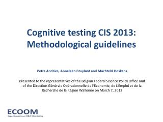 Cognitive testing CIS 2013: Methodological guidelines