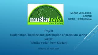 Geographic position  of the spring: Mountain  Konjuh , Kladanj , Tuzla Canton,