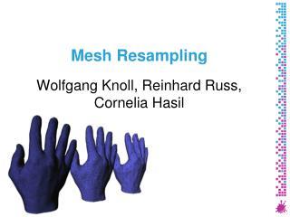 Mesh Resampling