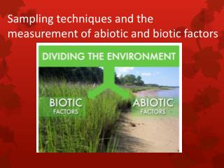 Sampling techniques and  the measurement of  abiotic and biotic factors