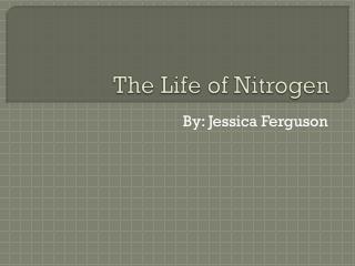 The Life of Nitrogen