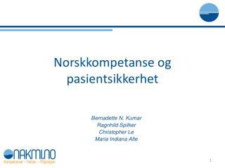 Norskkompetanse og pasientsikkerhet
