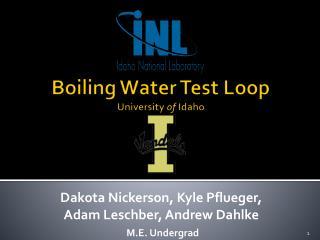 Boiling Water Test Loop University  of  Idaho