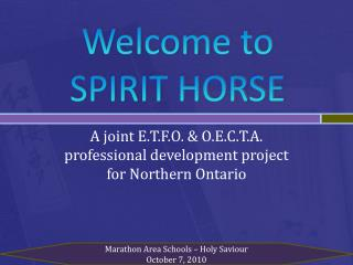 Welcome to SPIRIT HORSE