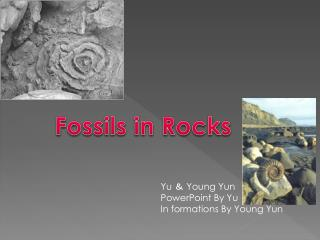 Yu  &  Young  Yun PowerPoint By Yu In formations By Young  Yun