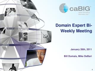 Domain Expert Bi-Weekly Meeting
