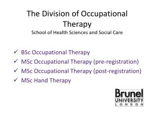The Division of Occupational Therapy School of Health Sciences and Social Care