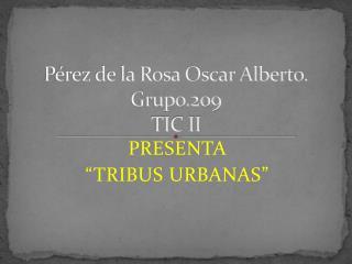 Pérez de la Rosa Oscar Alberto. Grupo.209 TIC II