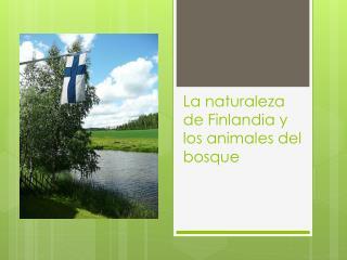 La  naturaleza  de Finlandia y  los animales  del  bosque