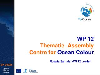 WP 12 Thematic Assembly Centre for Ocean Colour