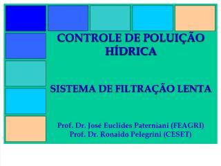 CONTROLE DE POLUI  O H DRICA   SISTEMA DE FILTRA  O LENTA   Prof. Dr. Jos  Euclides Paterniani FEAGRI Prof. Dr. Ronaldo