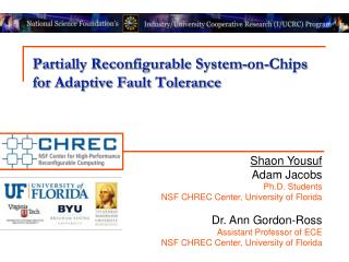 Partially Reconfigurable System-on-Chips  for Adaptive Fault Tolerance