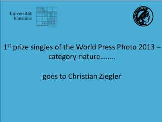 1 st  prize singles of the World Press Photo 2013 –  category nature……..