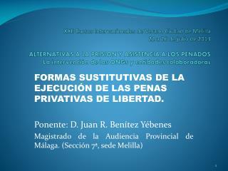 FORMAS SUSTITUTIVAS DE LA EJECUCI�N DE LAS PENAS PRIVATIVAS DE LIBERTAD.