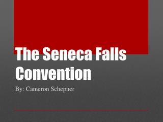 The Seneca Falls Convention
