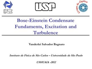 Bose-Einstein Condensate Fundaments, Excitation and Turbulence