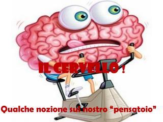 Il cervello  !
