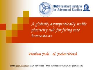 A globally asymptotically stable plasticity rule for firing rate homeostasis