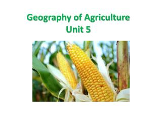 Geography of Agriculture Unit 5