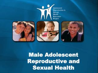 Male Adolescent Reproductive and Sexual Health